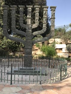 Places To Travel, Places To See, Israel History, Visit Israel, Biblical Hebrew, Israel Palestine, List Of Countries, I Want To Travel, Travel Tours