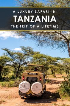 A guide to planning the ultimate luxury safari in the serengeti. the bucket list adventure of a lifetime, an african safari in tanzania affords travelers Kenya, Tanzania Safari, Adventure Bucket List, African Safari, Africa Travel, Plan Your Trip, Travel Guides, Travel Tips, Luxury Travel