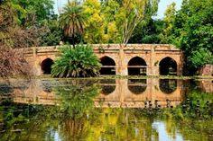 Delhi - Lodhi Gardens