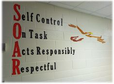 Positive Behavior Systems in Schools | ... start a school-wide positive behavior system that defines behavior