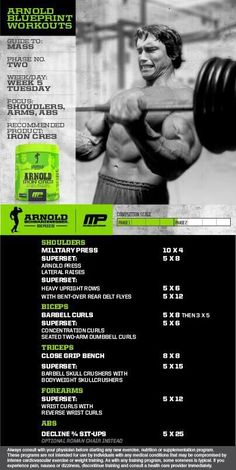 Muscle and Fitness Workout Routines Sport Fitness, Muscle Fitness, Gain Muscle, Weight Training Workouts, Gym Workouts, Arnold Blueprint, Arnold Schwarzenegger Workout, Arnold Schwarzenegger Bodybuilding, Arnold Training