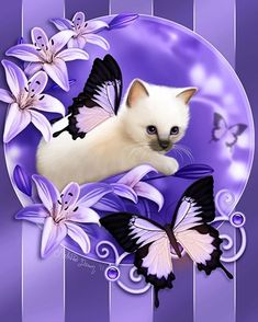 Items similar to SALE Siamese Cat Art Print // Ragdoll Cat // Purple Lilies - on Etsy Siamese Cats, Cats And Kittens, I Love Cats, Cute Cats, Adorable Kittens, Lily Cat, Animals And Pets, Cute Animals, Purple Lily