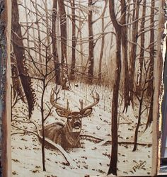 sunrise-whitetail deer 9 by 12 inches