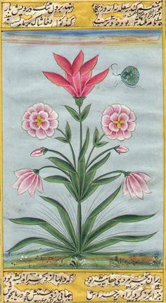 For the flowers and the bug.  Mughal Flower, uncredited