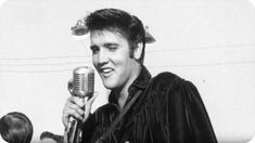 59 years ago today ▸ Elvis performs two shows at the Mississippi-Alabama Fair and Dairy Show in Tupelo, Mississippi, September Elvis Presley's Birthday, Happy Birthday Baby, Elvis Presley Songs, Priscilla Presley, Tupelo Mississippi, Young Elvis, Moody Blues, Graceland, Rare Photos