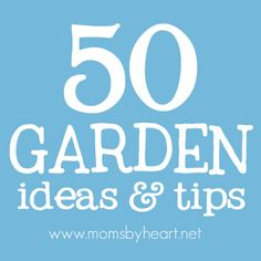 50 Garden Ideas & Tips. I learned a lot reading this!