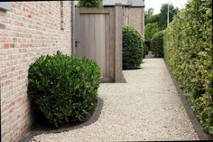 love the path Landscaping Tips, Garden Landscaping, Cosy Garden Ideas, Wooden Arbor, Narrow Garden, Professional Landscaping, Exterior Front Doors, Glass House, House Front