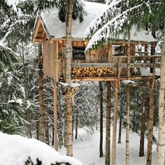 An escape to this cabin wouldn't be half bad would it? I just love the ingenuity of suspending this dwelling up in the canopy of the forest.