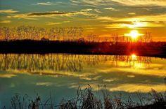 Il laghetto presso la cascina Boffalora di Mede Lomellina. (Pic: Leonetto Strambi) #tramonto #Lomellina #paesaggi #turismo