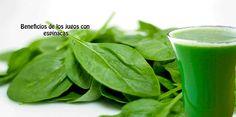 Beneficios de los jugos con  espinacas