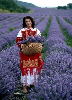 Kazanlak, Bulgaria. A beautiful woman in lavender field