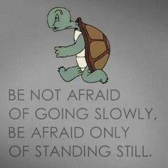 Be afraid only of st  Be afraid only of standing still.  #progressnotperfection  https://www.pinterest.com/pin/445082375655827251/   Also check out: http://kombuchaguru.com