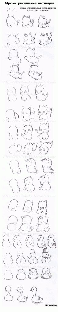 Today's Drawing Class: Drawing animals | how to draw anime animals. So cute