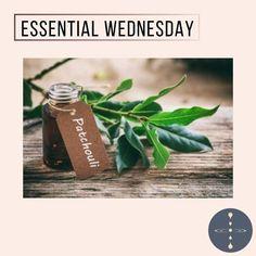 Patchouli Essential Oil, Essential Oils, Aromatherapy, Instagram, Essential Oil Uses, Essential Oil Blends