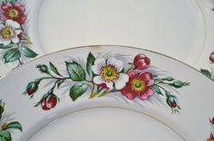 Vintage John Maddock and Sons Montana Dinner Plare Set of 2 Dogwood Chippy Mismatched China Decorative Plate Replacement PanchosPorch