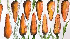 Learn how to create an interesting carrot pattern using repetition and washes of simple watercolor. Final pen details are optional but I love how it creates just enough texture to give it a finished look. Watercolor Pencil Art, Watercolor Video, Watercolor Plants, Watercolour Tutorials, Watercolor Texture, Watercolor Pattern, Watercolor Techniques, Watercolor Cards, Simple Watercolor