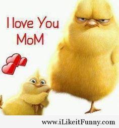 8 Beste Afbeeldingen Van Love You Mom Cutest Animals Fluffy