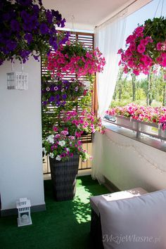 Small Balcony Design, Small Balcony Garden, Balcony Flowers, Small Balcony Decor, Balcony Plants, Outdoor Balcony, Terrace Garden, Outdoor Spaces, Balcony Gardening