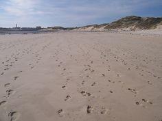 Berck-Plage à marée basse - Pas de Calais (Juillet 2011)