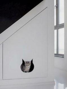 Litter box in cabinet?