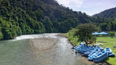 WHITE WATER RAFTING KIULU RIVER (GRADE I - II) TOUR in BORNEO, SABAH Malaysia | RIVERBUG - Discover Sabah, Borneo With Us!