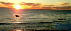 Ocean bliss.  San Pedro Peninsula.