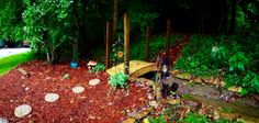 My landscaping, dry creek bed, garden bridge I created beside our backyard pond.