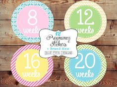 Baby Bump Stickers,Pregnancy Tracking Stickers,Pregnancy Announcement,Pregnancy Reveal,Weekly Pregnancy,Pregnancy Countdown Gift,Mom to Be on Etsy, $12.50