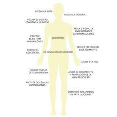 Nutre tu cuerpo: aguacate ©blamag