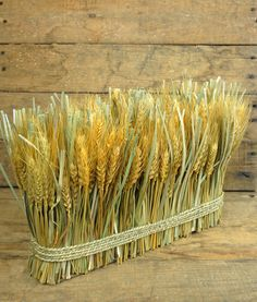 An essential seasonal decoration, this Preserved Wheat bundle will add a rustic fall composition to your reception tables. This display of wheat has a natural golden appearance and features preserved green grass interspersed between the stalks. Wheat Centerpieces, Wheat Decorations, Rustic Wedding Centerpieces, Thanksgiving Decorations, Seasonal Decor, Fall Decor, Wheat Wedding, Wheat Flower, Deco Champetre