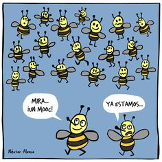 mooc_abejas