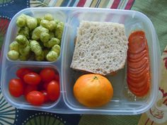 The Best Divided Lunch Containers - Go Mama Go!