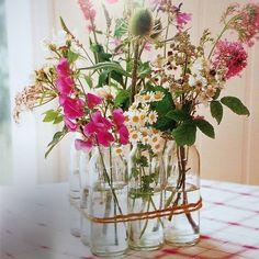 A simplicidade nas flores me atrai