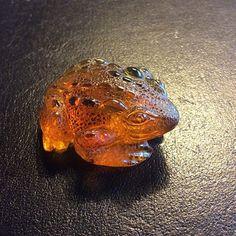 """Frog artfully carved from Dominican amber. #frogporn #süß #animal  #lovefrogs #treefrog #lovenature #zen #amphibian #photooftheday #carving  #aquarium  #pond #szczęśliwi #pond #lake #quack  #عمان #السعودية #الكويت #بولندي #قديم  #منمش #بلطيقي #البحرين #سبح #دومينكاني #كهرب #خراطة #khalifaalhariri"" Photo taken by @blue_amber_green_emerald on Instagram, pinned via the InstaPin iOS App! http://www.instapinapp.com (07/19/2015)"