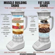 shake to lose weight top 10 Best protein shake to lose fat and build muscle mass fast and easy Quick Weight Loss Tips, Fast Weight Loss, How To Lose Weight Fast, Losing Weight, Lose Fat, Weight Gain, Reduce Weight, Fat Fast, Weight Lifting