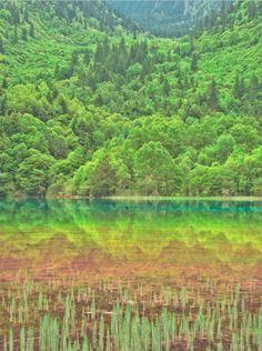 Five Color Lake, Jiuzhaigou, China.