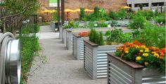 urban architecture agriculture - Buscar con Google