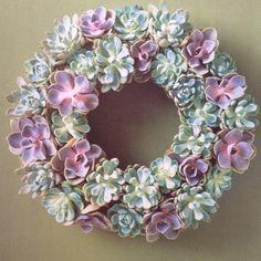 Nice succulent wreath