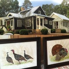Y'all... These gobblers have arrived just in time for Thanksgiving at Farmdale ... Thank you @agleedesign for your incredibly detailed paintings - they are going to be treasured here! I am so thankful to have friends from Auburn who are beyond talented - and to have their work in my home! And, speaking of talent... my architect @robertdnorris ... This is my favorite angle of Farmdale! Gobble gobble y'all!!! #thirtydaysofthanksgiving #Farmdale #farmdalecottage #spitzmillerandnorris…