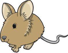 Fröken Flano Filosoferar: Flanosaga: Våra smådjur 2 - 6 år