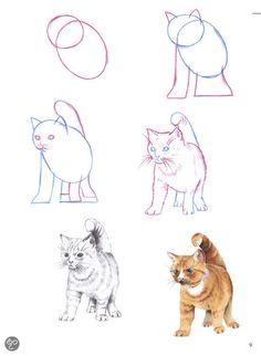 hoezo moeilijk teken dieren van kop tot staart - Google zoeken