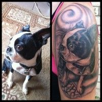 [Photo] The Tattoo Featuring Pickles The Boston Terrier Is Finished