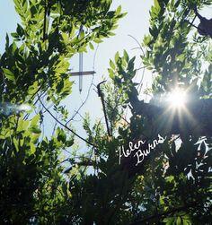 Heaven hidden in nature