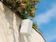 Enjoying Music Outside with the Monitor Audio Climate Outdoor Speakers