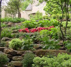 Hillside Landscaping Design, Pictures, Remodel, Decor and Ideas - page 20