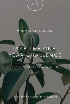 Take the one-year minimalism challenge. Simplify your life with this comprehensive online minimalist lifestyle course Minimalism Meaning, Minimalism Blog, Minimalism Living, Areas Of Life, Singing Tips, Minimalist Lifestyle, Slow Living, Less Is More, Simple Living