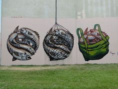 Freshly Caught Fish by Fintan Magee