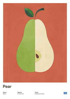 Pear Orange, Large Scandinavian Modern Minimalist Poster, Natural History Fruit Print, Kitchen Modern Home Decor   This is part of a series of posters taking a modern minimalist twist in Natural History engravings. The modern aesthetic of the poster make it a piece of art that fits well with any decoration style. Great for any room or space, perfect for those who love the lightness and simplicity of scandinavian design.