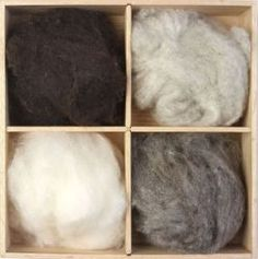 Carded wool in a variety of natural Undyed colours from Jacob Sheep.