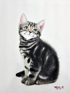 Watercolor Paintings Of Animals, Watercolor Cat, Animal Paintings, Animal Drawings, Baby Cats, Cats And Kittens, Ragdoll Kittens, Funny Kittens, Bengal Cats